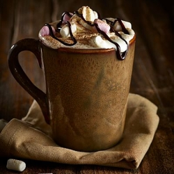 brown terra stoneware mug opt