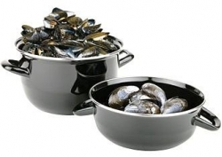 mussel opt