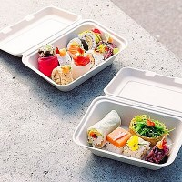 Fully Compostable Bagasse Food Boxes with Food