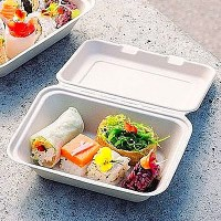 Biodegradable Bagasse Lunch Box