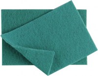 Green Nylon Scourer 230x150mm
