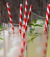 Biodegradable Paper Drinking Straw Red Stripe 19.5cm / 8inch